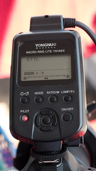 The Yongnuo YN 14 EX Macro flash