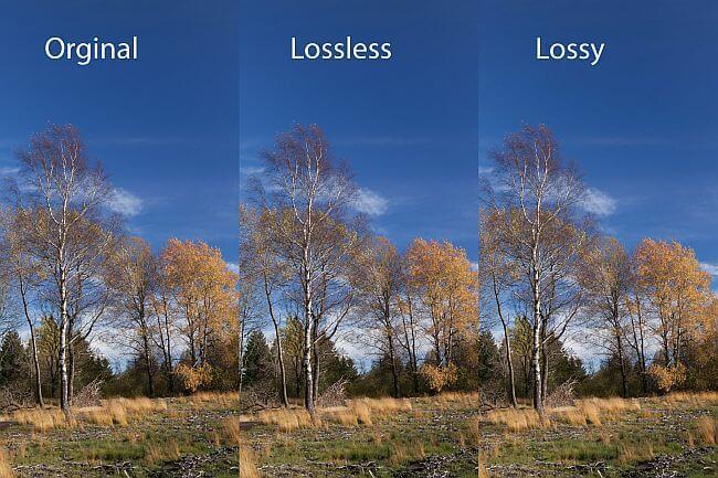 JPEG image size reduction with ShortPixel