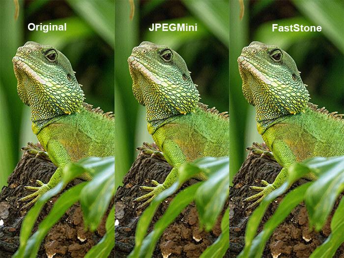 JPEG Dateien verkleinern