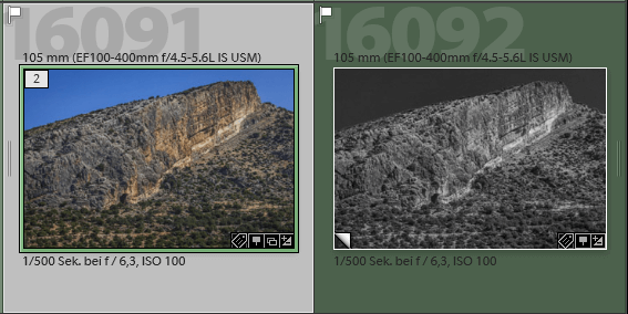 Catalog functions in Lightroom,ON1 and Luminar 3