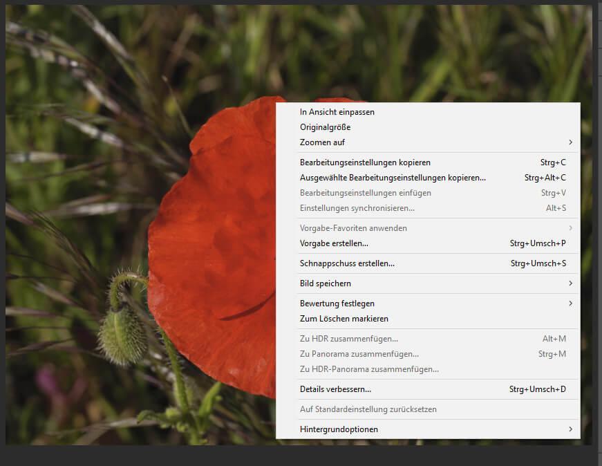 Adobe veröffentlicht Lightroom Classic, Camera Raw und Photoshop Updates